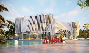 Angia Gallery